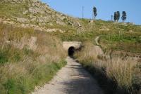 Vedi album Ispezione ferrovia a SR tra Favara e Naro - gennaio 2013 - foto di Pietro Fattori